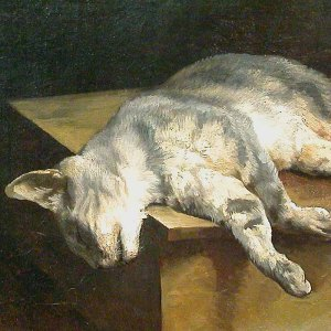 La Chat Mort